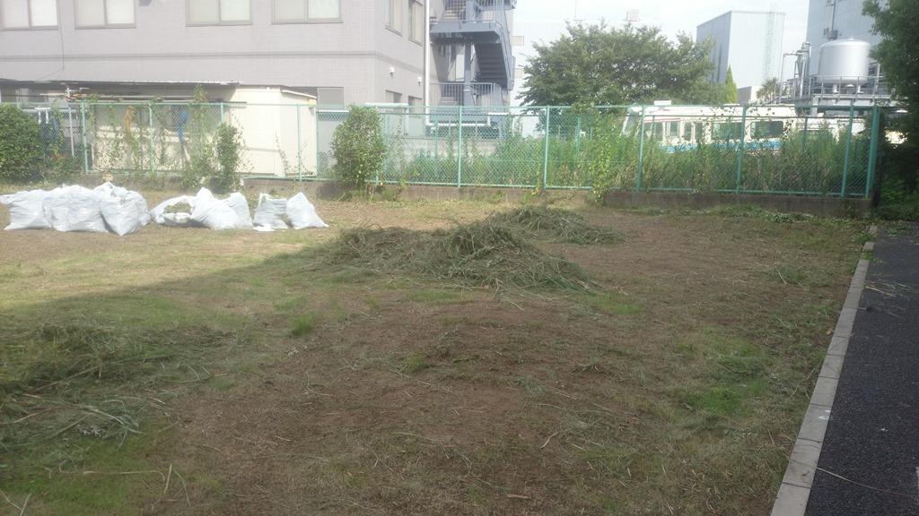 草刈り_4